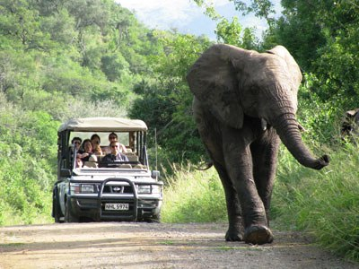REME RFC Game Drive South Africa