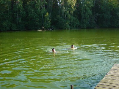 E&A Swimming in one of Estonia's Lakes