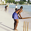 Worldwide Cricket Gallery Listing