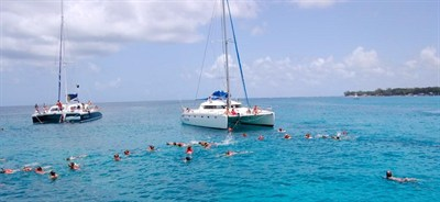 Catamaran And Swimming In Barbados