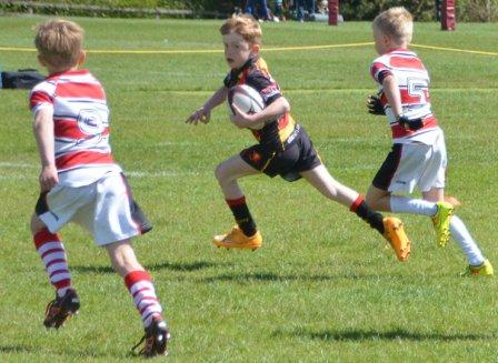 The Harrogate Mini And Junior Rugby Festival