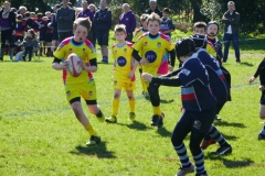 Fullerians RFC U12's Rugby Tour to The Bournemouth Mini and Junior Rugby Festival 2017