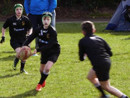 Mini And Junior Rugby Festivals