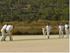 Cricket Blog